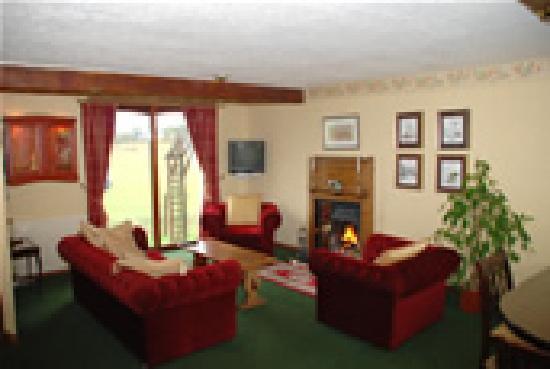 Ardoch Cottage: Guest lounge area