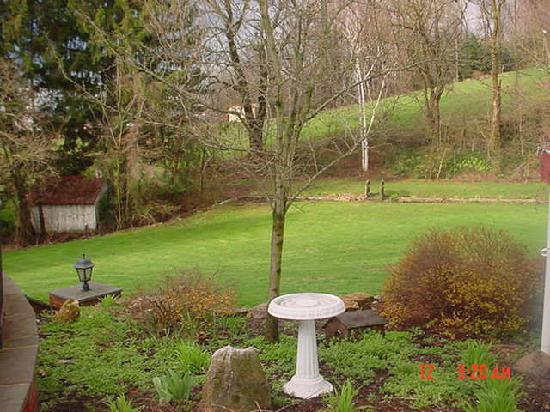 Boxwood Inn Bed & Breakfast: View from the patio