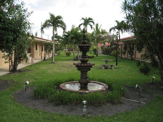 Sunnyside Motel: Blick in den Garten