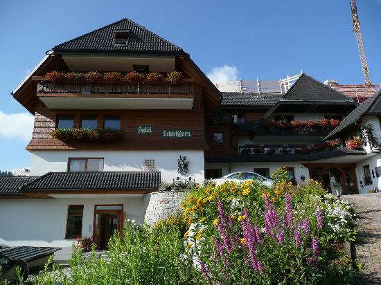 Hotel photo de hotel schlehdorn feldberg tripadvisor for Design hotel niedersachsen