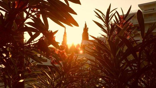 Hotel Astarea: Coucher de soleil sur l'hôtel
