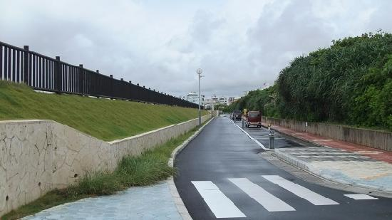 Miyagi Coast: 海岸線に沿って右の様な無料駐車場多数あり