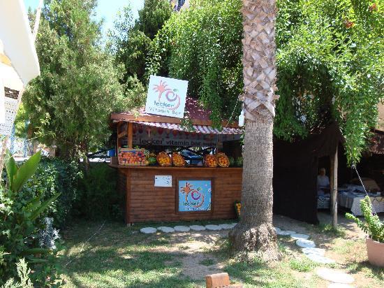 Corolla Hotel: Le bar à cocktail et à droite la cabane à galettes.