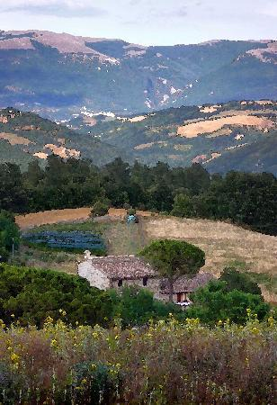 Villa Pian Di Cascina: Pian Di Cascina (c) BryPix.com 2010