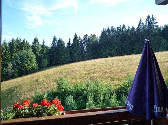 Hornberg, เยอรมนี: Aussicht aus dem Fenster im Nebenhaus