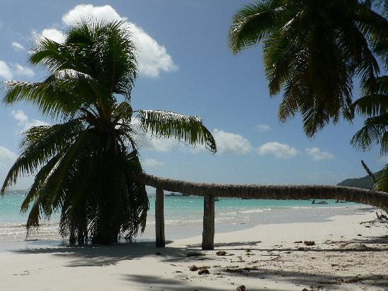 Hotel Cote D'Or: prslin spiaggia