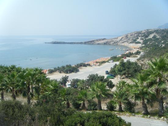 Eleni Hotel : Paradise Beach