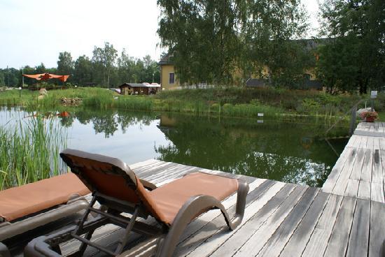 Seehotel Burg im Spreewald: Outdoor pool