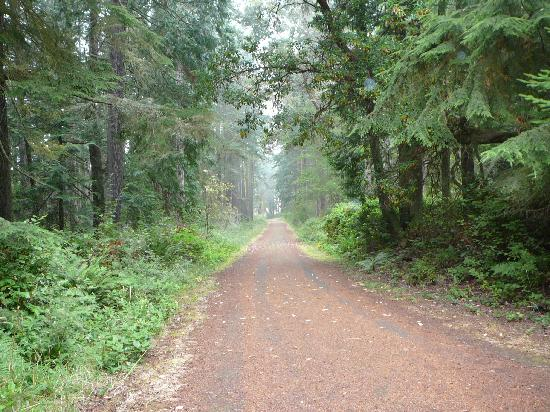 Fort Worden: Hiking trail near the house