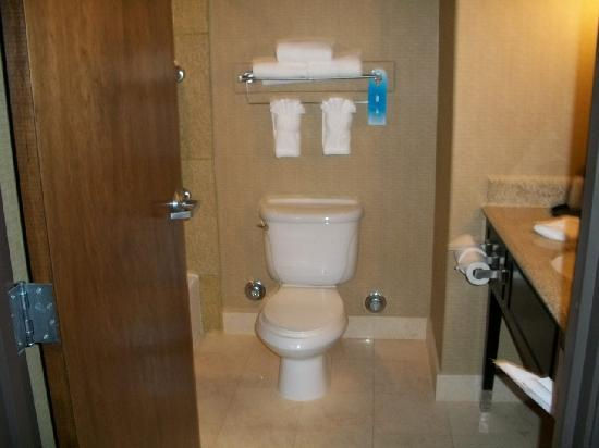 La Quinta Inn & Suites Ely: Bathroom (sorry it's fuzzy)