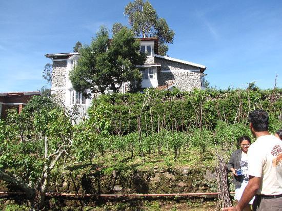 Cinnabar : View from the garden