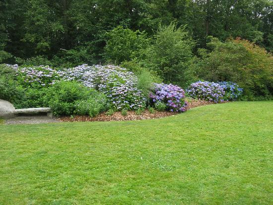Kubota Garden: Hydrangea Terrace