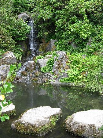 Kubota Garden: stepping stones near the waterfall