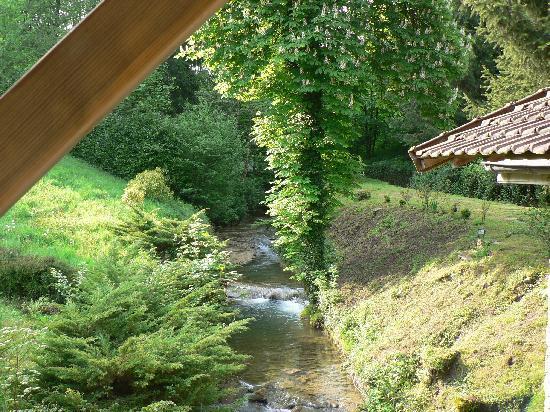 Domaine Du Moulin Vallee Heureuse : vue au sortir de la chambre