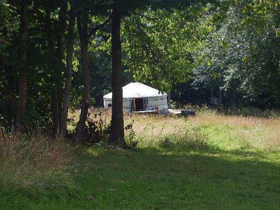 Strawberry Skys Yurts: The yurts from the top of the field
