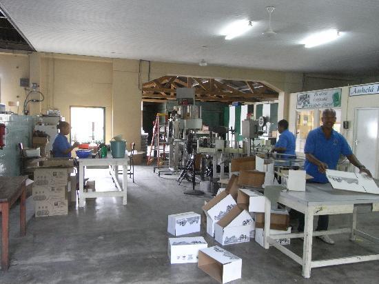Curacao Liqueur Distillery: in der Likörfabrik