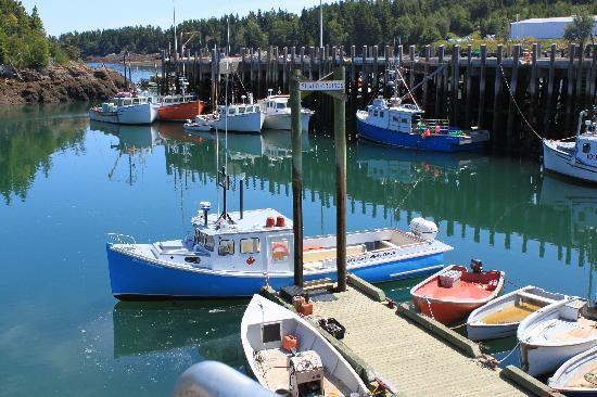 Campobello Island, Kanada: Boat at dock