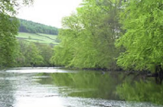 Knowles Lodge: The river - fishing available