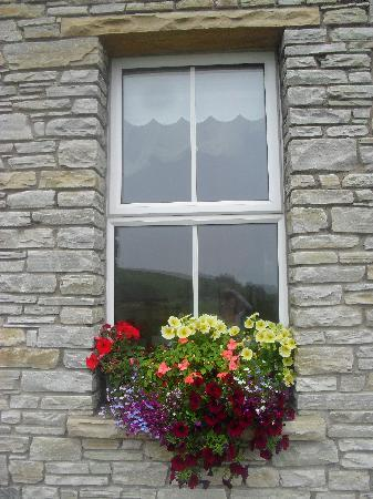 The Cove Lodge B&B: window dressing