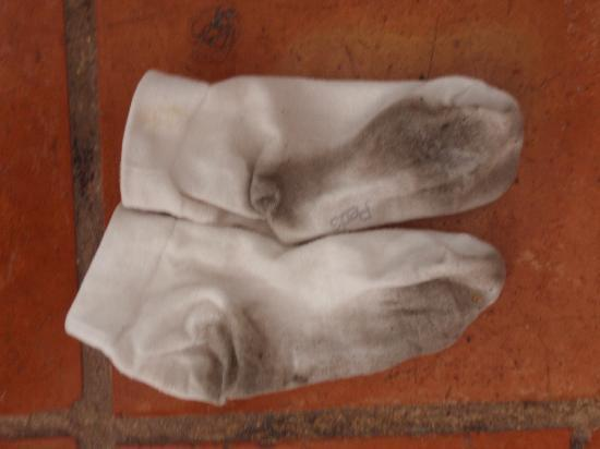 Y O Ranch Hotel & Conference Center: my white socks after walking on the dirty floor