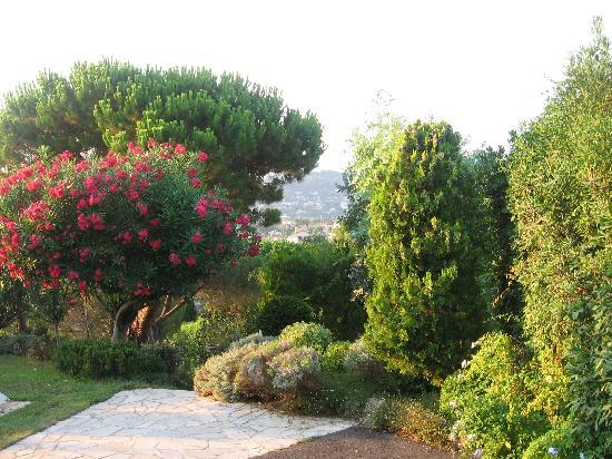 Golfe-Juan Vallauris, Francia: Garden
