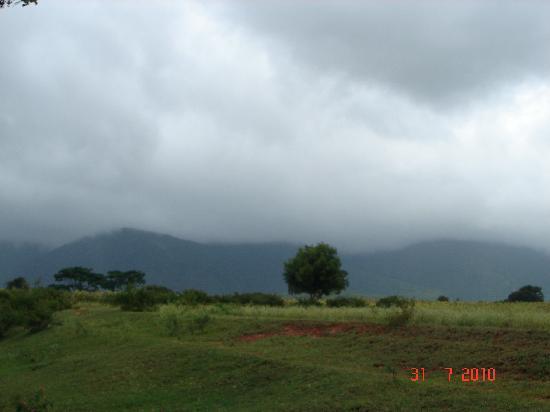 Masinagudi, الهند: Masinagudi