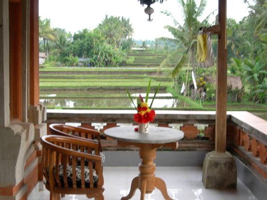 Nirwa Ubud Homestay: Balcony view