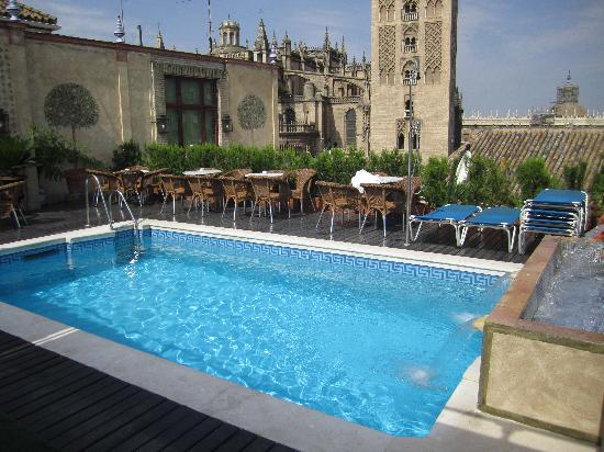 Hotel Dona Maria: The rooftop pool