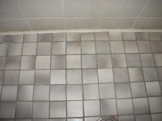 Parkview Hotel Sydney: Shower floor and wall