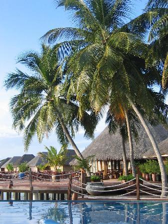 Dhaalu Atoll: le 2eme resto