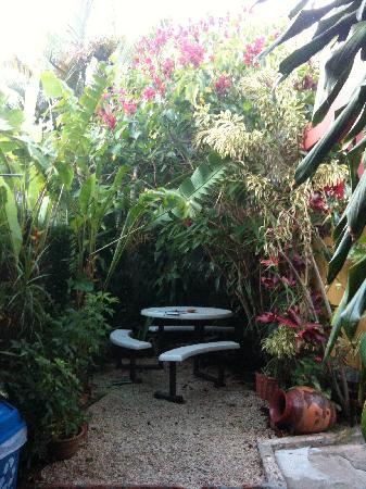 Hotel Pacande: Garden
