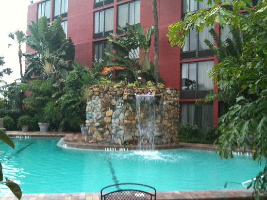 Crowne Plaza Fort Myers at Bell Tower Shops: The pool with a waterfall