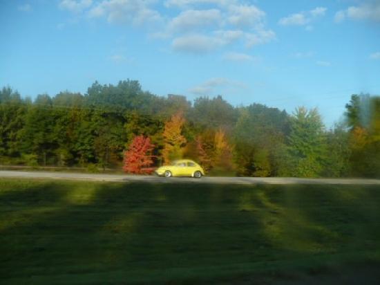 Michigan im Herbst