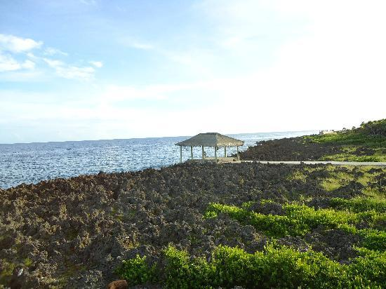 Seagrape Plantation Resort: una vista del mar espectacular