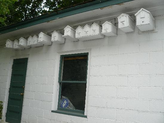 Compton House Bed & Breakfast: birdhouses on the garage