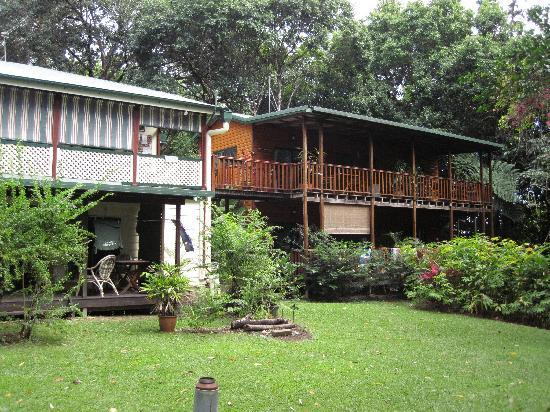 Red Mill House in Daintree: Backyard at Red Mill House, Daintree.
