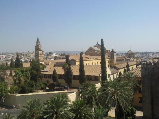 Den Store Katedral og Moské (Mezquita de Cordoba): la mosquée vue de l'alcazar