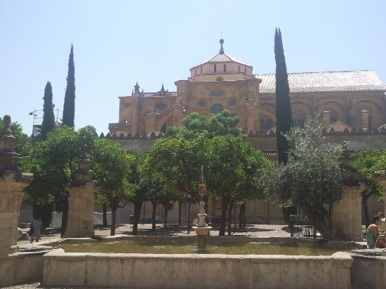 Den Store Katedral og Moské (Mezquita de Cordoba): les jardins de la mosquée
