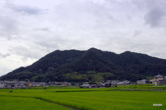 Washinoyama
