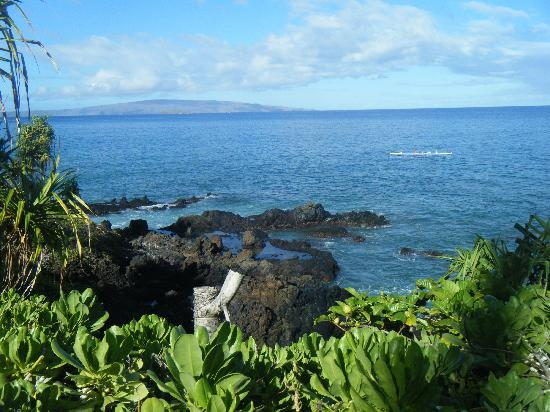 Wailea (ชุมชนไวลี), ฮาวาย: Wailea Oceanpath
