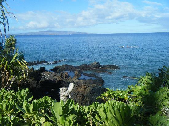 Вайлеа, Гавайи: Wailea Oceanpath