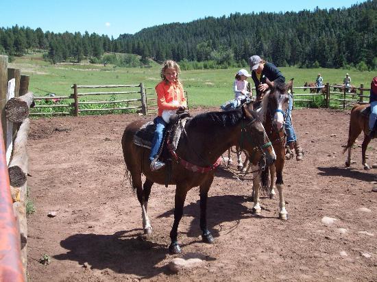 Cuchara, CO: Horse Rides