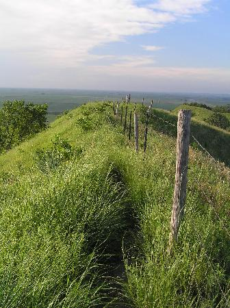 Loess Hills Scenic Byway: Murray Hill Scenic Overlook (note sharp peak)