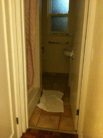 Seaway Inn: small bathroom with shower