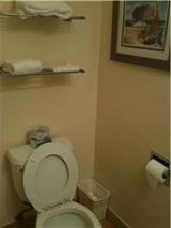 Seaway Inn: toilet