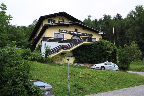 picture of the Gasthof Waldluft