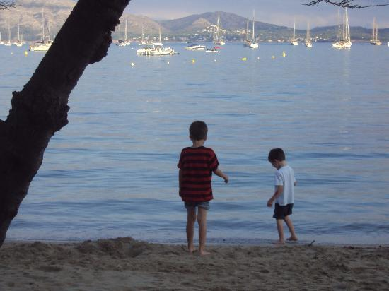 Pinos Altos: evening on the beach at Port Pollensa