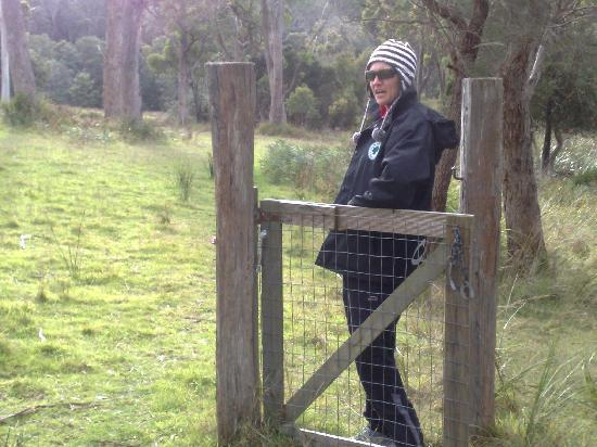 Platypus Park Country Retreat : On a river stroll