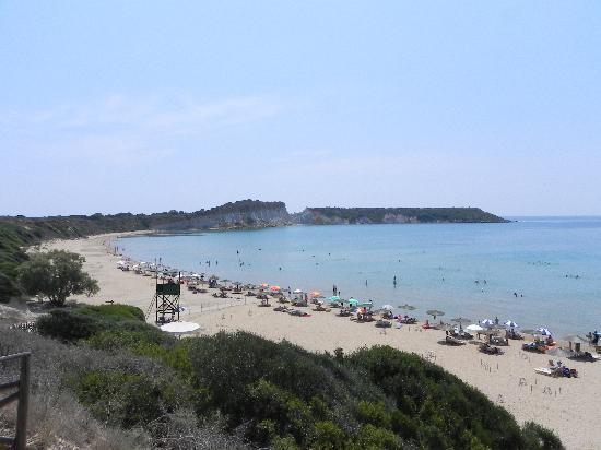 Arazzo Apartments & Studios: the tutles beach