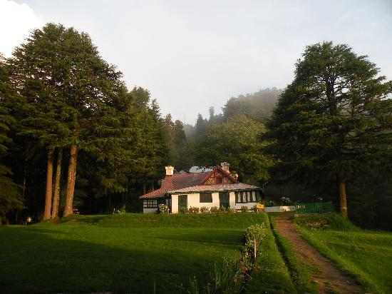 Dalhousie, Hindistan: The Forest Guest house